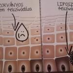 liposzoma